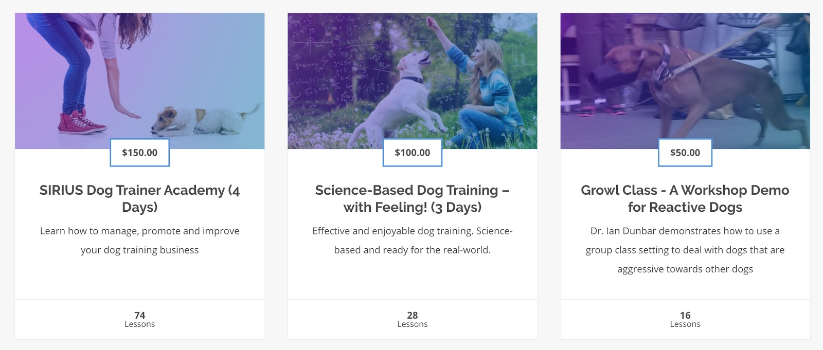 dog-training-online-academy-dunbar