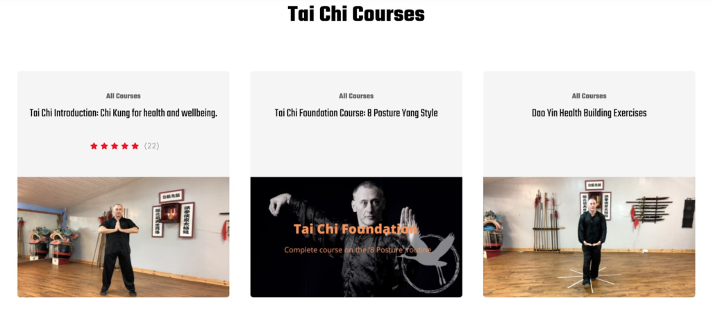 An example of digital products in the form of tai-chi courses being sold online