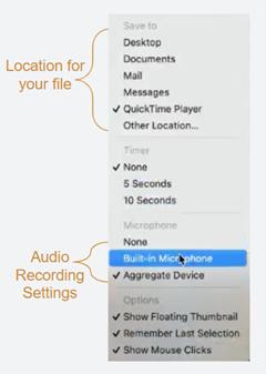 Options for the mac screenshot toolbar