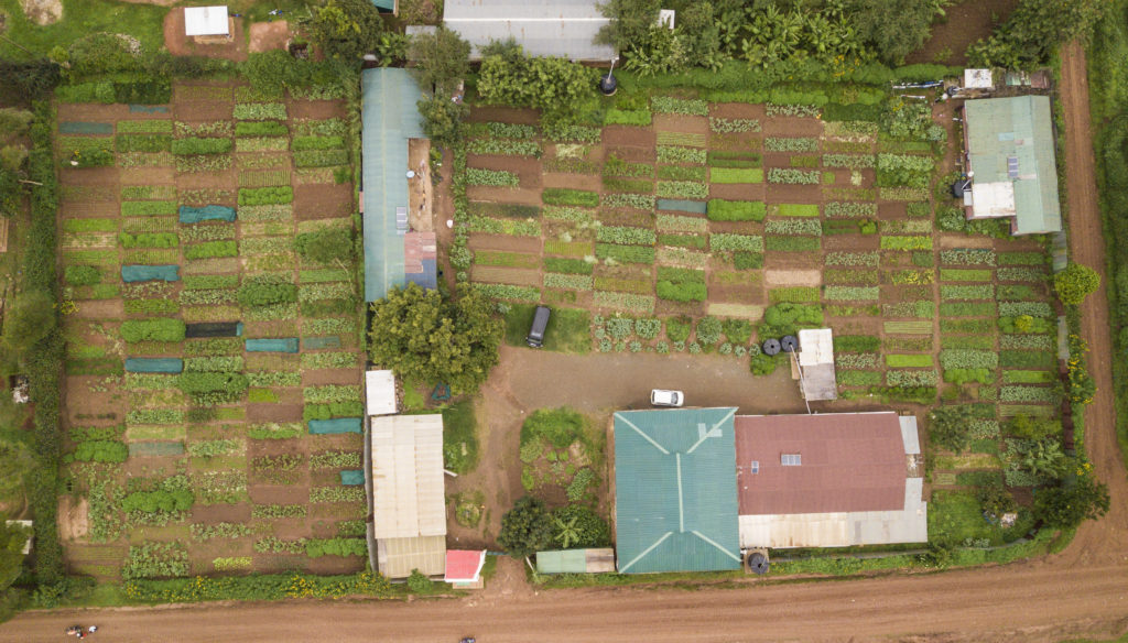 Ariel view of local sustainable food gardens